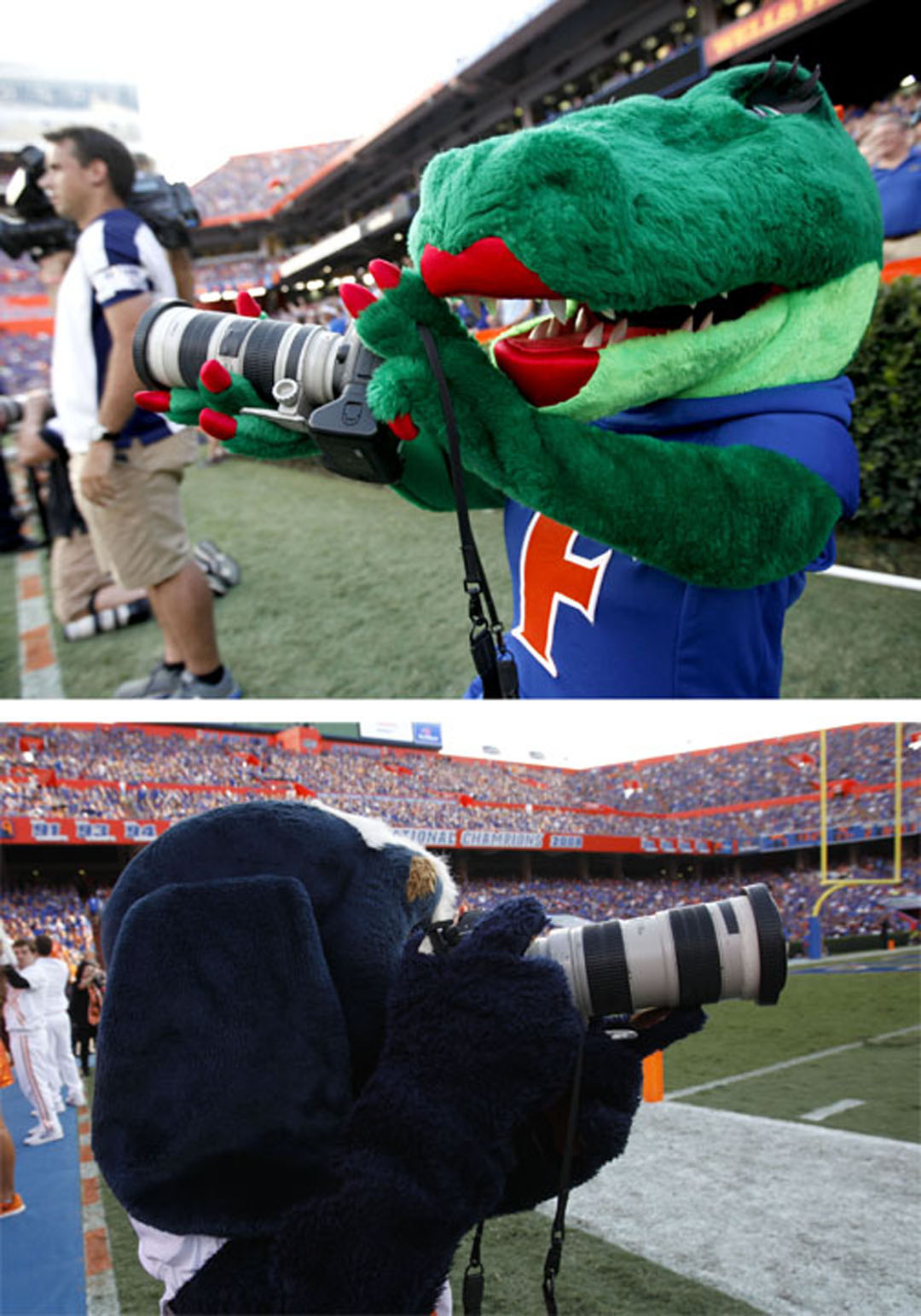 Scenes from the sidelines during the game between the Florida Gators and Tennessee Volunteers on Saturday, Sept. 26, 2015 in Gainesville, Fla. Florida defeated Tennessee 28-27. Matt Stamey/Staff photographer