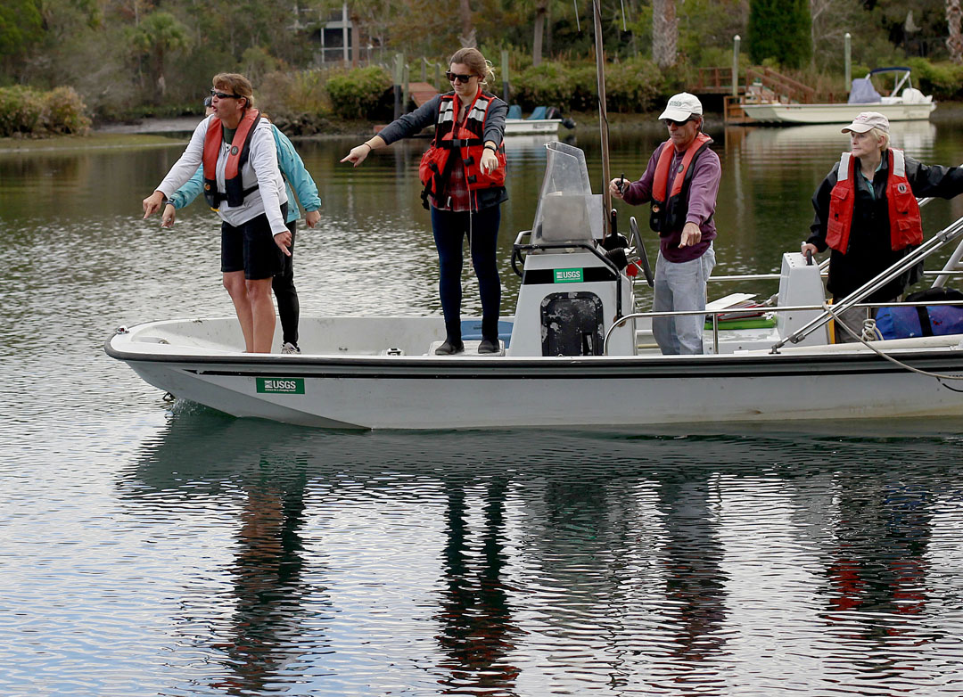 A crew points out manatees in the water during the USGS manatee captures and health assessments on Wednesday, Dec. 9, 2015 in Crystal River, FL. A team of scientists, veterinarians and volunteers spent two days capturing manatees to gather health data. This was the 10th year of the assessments. The program monitors the status of the regional population of Florida manatees. Matt Stamey/Staff photographer