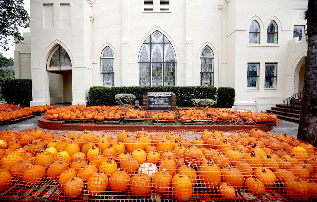 Pumpkins are seen under fencing outside the First United Methodist Church as Hurricane Matthew approaches on Thursday, Oct. 6, 2016 in St. Augustine, FL. Matt Stamey/Gainesville Sun