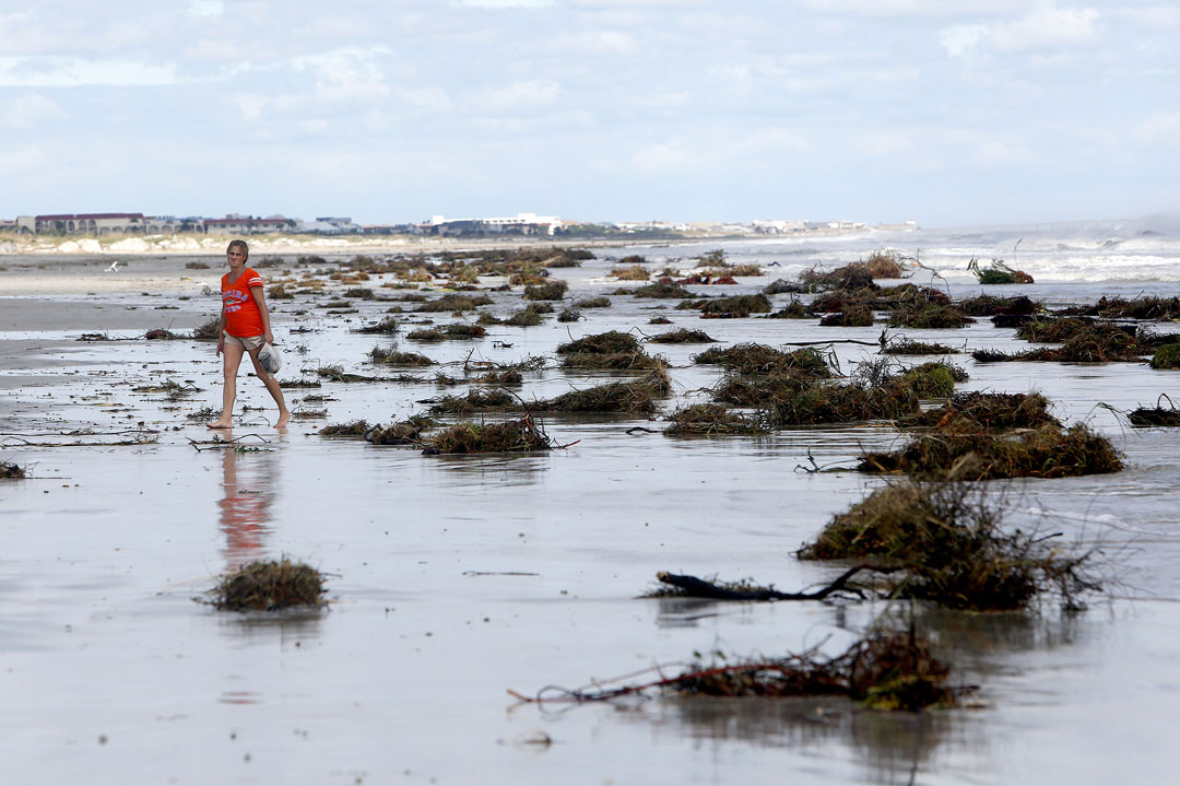 A woman walks past debris along Crescent Beach after Hurricane Matthew on Friday, Oct. 8, 2016 in St. Augustine, FL. Matt Stamey/Gainesville Sun