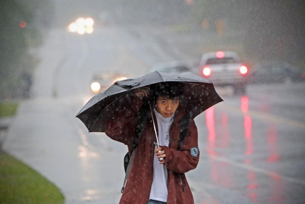 Umbrella + Background